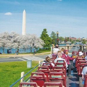 Groupon: Sightseeing Bus Tour of Washington D.C. with Wax Museum Visit