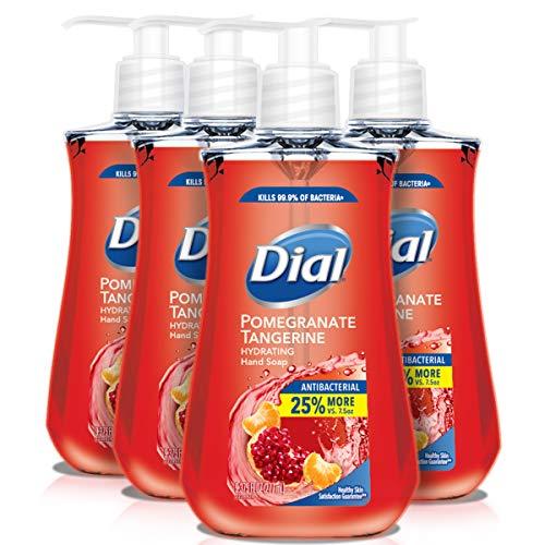Dial 抗菌滋润洗手液,9.375 oz/瓶,共4瓶, 现
