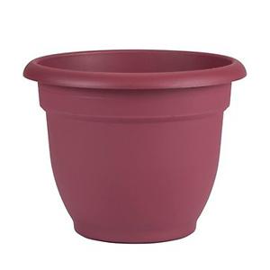 "Bloem Ariana Self Watering Planter, 6"""