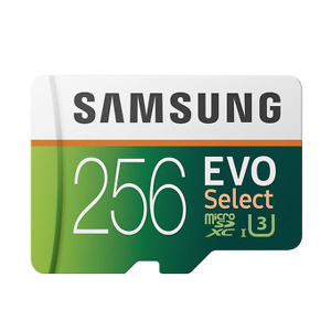 Samsung Electronics EVO Select 256GB