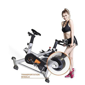 YOSUDA Indoor Cycling Bike Stationary
