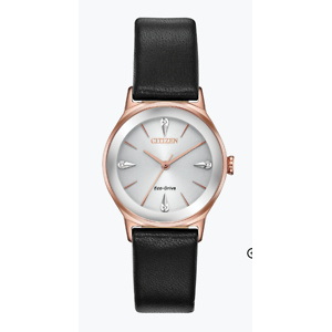 Citizen Watch: Free Standard Shipping  for Any Order Placed