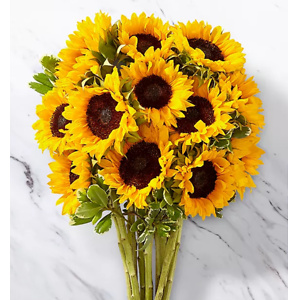 ProFlowers: 20% OFF Your Order
