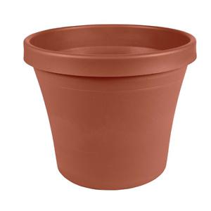 Bloem Terra 8寸塑料花盆