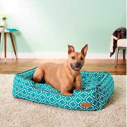 P.L.A.Y. Pet Lifestyle and You Moroccan Bolster Cat & Dog Bed w/Removable Cover