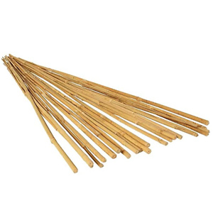 Hydrofarm HGBB4 4' Natural, Pack of 25 Bamboo Stake