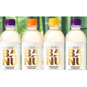 blk. beverages: Cyber Monday Sale - 65% OFF BANU BAMBOO Water