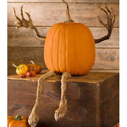 Pumpkin Vine Arms & Legs Set