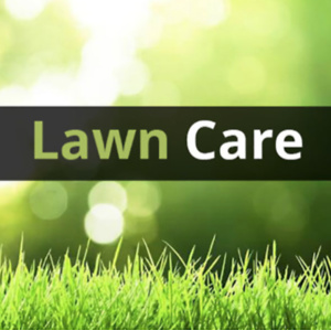 Amazon: Lawn Care Products Sale
