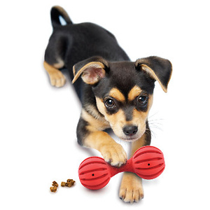 PetSafe.net: Clearance Items As Low As $4.95