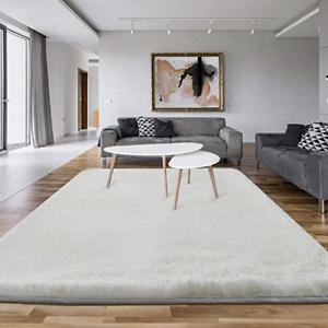 Asvin 5x7 Area Rug, Fluffy Living Room Area Rug