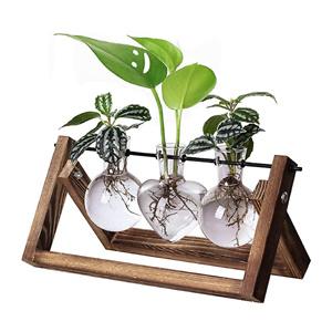 HUABEI 小清新植物水培站