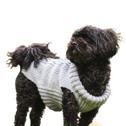 宠物服饰针织套件