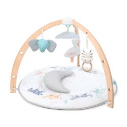 baby activity gym