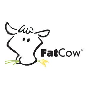 FatCow:  60% OFF Web Hosting Plans