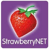 StrawberryNET Christmas Sale: Up To 70% OFF + More