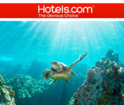 Up to 50% OFF + Extra 5% OFF Hotel Deals