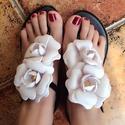 Melissa Solar Garden Women's Sandal