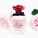 Dolce & Gabbana Dolce Rosa Excelsa 1 Oz Edp Sp
