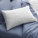 Tempur-Pedic Cloud Soft and Lofty Pillow