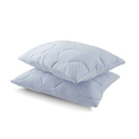 Summer Cooling Gel Reversible Memory Foam Loft Pillow (2-Pack)