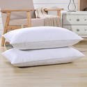 PlumaDown European White Goose Down 700 Fill Power Pillows