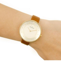 Skagen Women's SKW2558 Gitte  Leather Watch